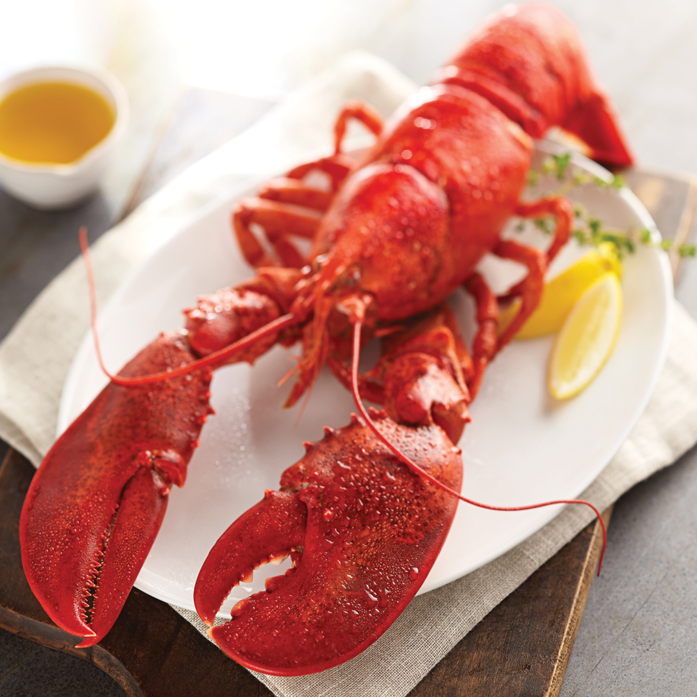 Add-On Live Lobsters & Fresh Seafood