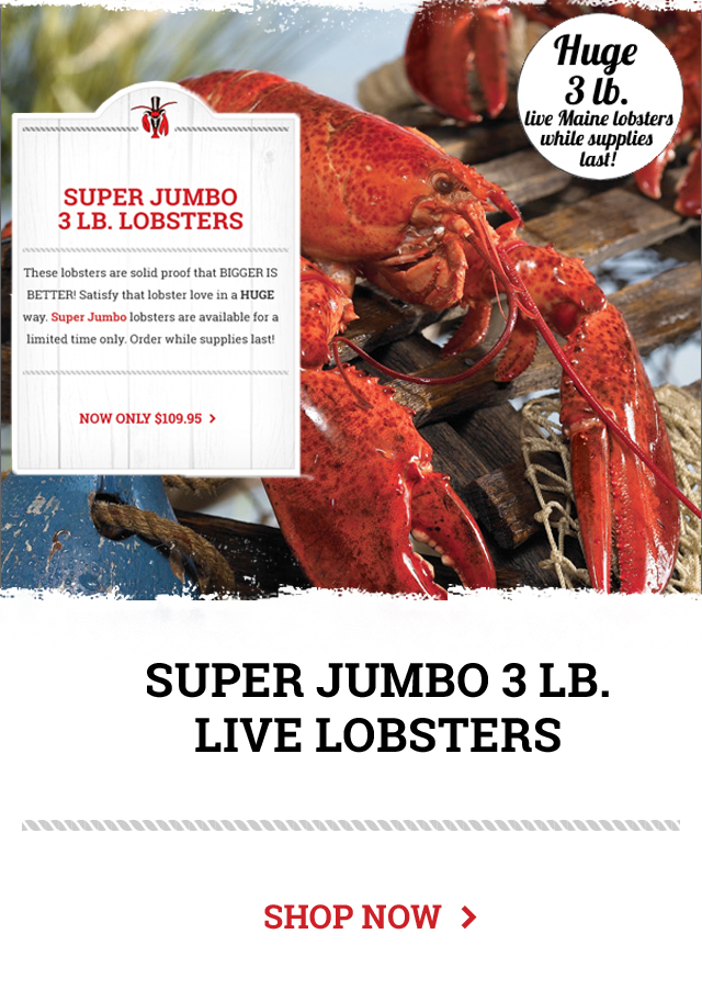 Super Jumbo Lobsters